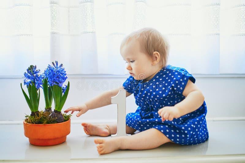 Ребенок в голубом платье сидя на силле окна с голубыми гиацинтами стоковое фото rf