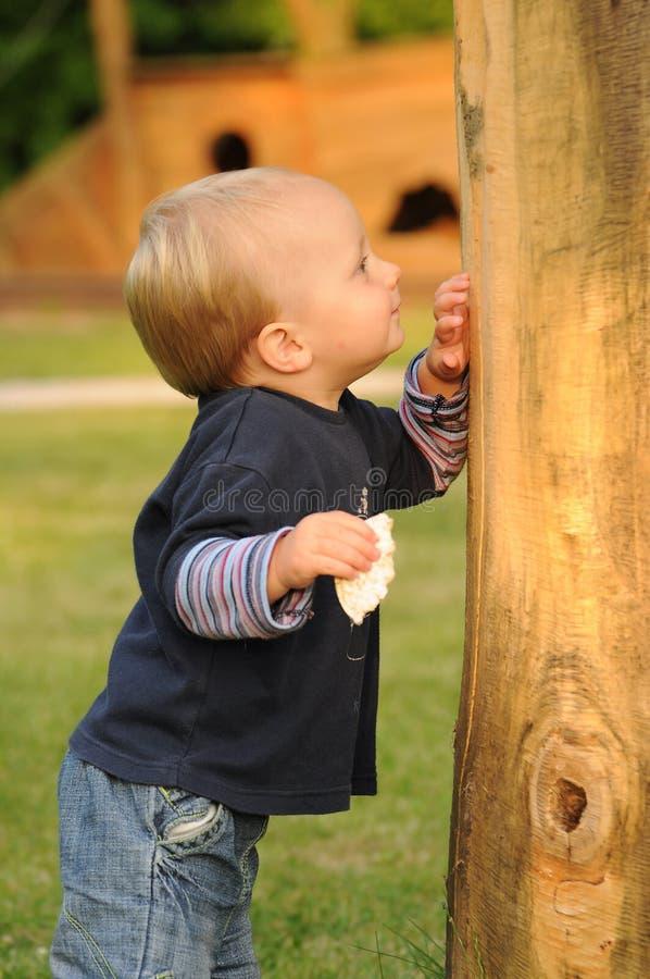 Ребенок в парке детей стоковые изображения
