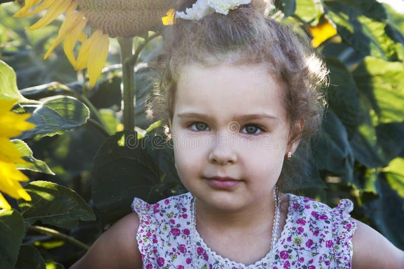 Ребенок в солнцецветах стоковая фотография rf