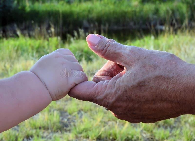 ребенок держа руку дедов стоковое фото rf