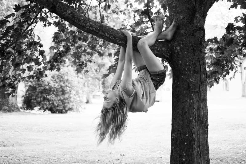 Ребенок играя в дереве стоковые фотографии rf
