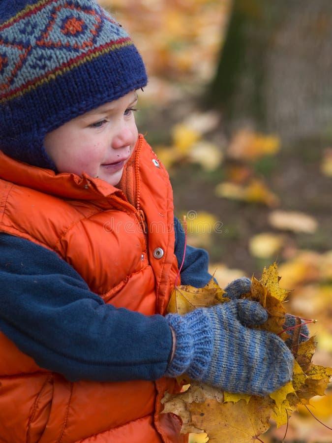 Ребенок играя с листьями стоковое изображение rf