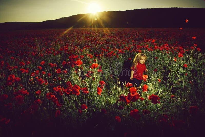 Ребенок или плача мальчик на поле мака летом стоковая фотография