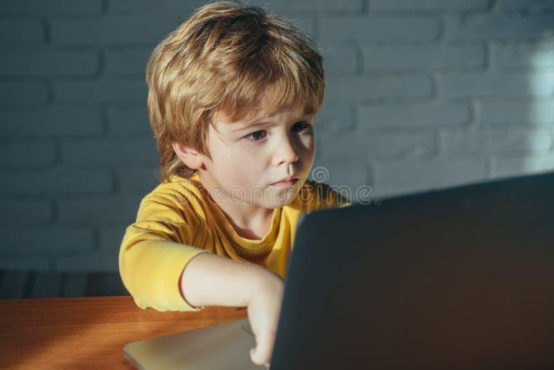 Ребенок используя ноутбук Опасность интернета Умные молодые работы мальчика на ноутбуке для его нового проекта в его компьютерных стоковые изображения