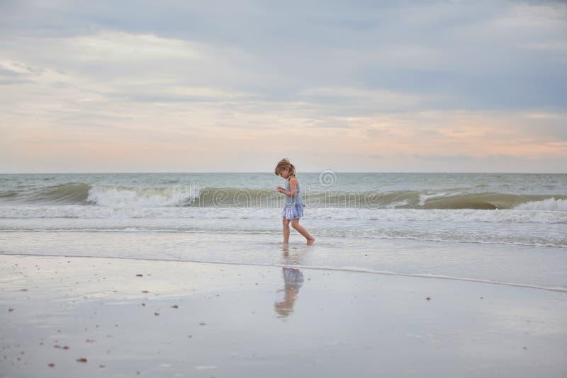 Ребенок ища для seashells стоковое изображение