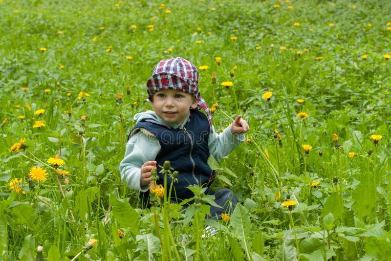 Download Ребенок на лужайке стоковое фото. изображение насчитывающей ребенок - 40591974