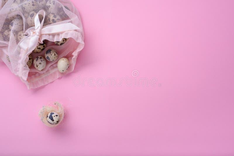 Ребенок новорожденного, детский душ или концепция поздравительной открытки беременности Яичко триперсток в птицы гнездится над ро стоковое изображение