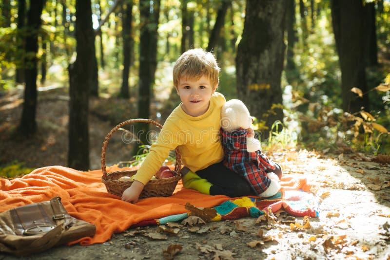 Ребенок ослабляет в природе осени Пикник осени с плюшевым мишкой Мальчик в резиновых ботинках ослабляя в лесе сидит одеяло пикник стоковое изображение rf