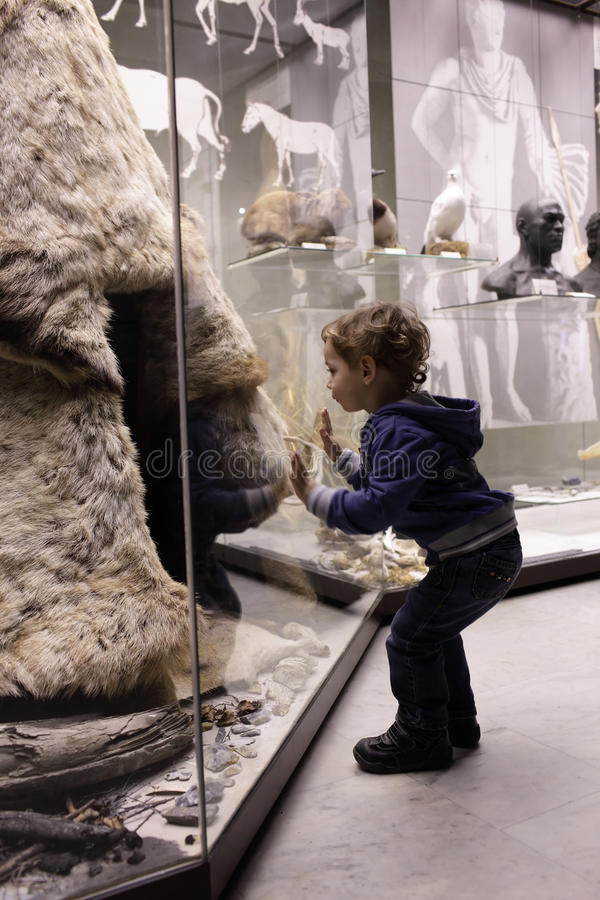 Ребенок посещая исторический музей стоковое изображение rf