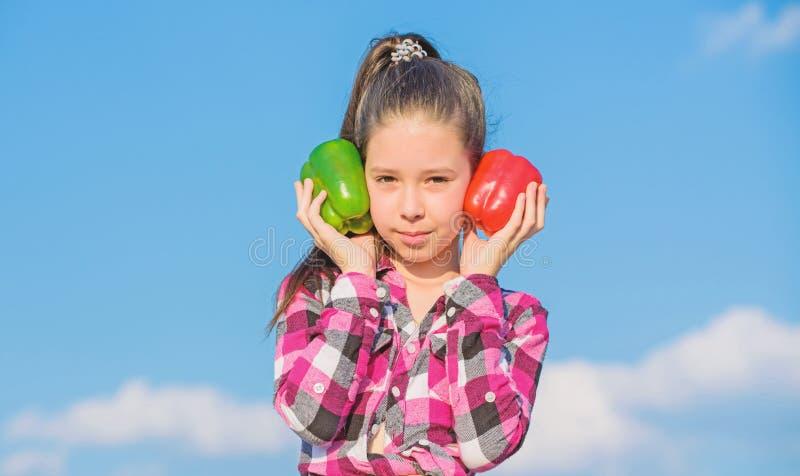 Ребенок представляя виды перца Овощи сбора падения доморощенные Выберите что Альтернативная концепция решения o стоковое фото