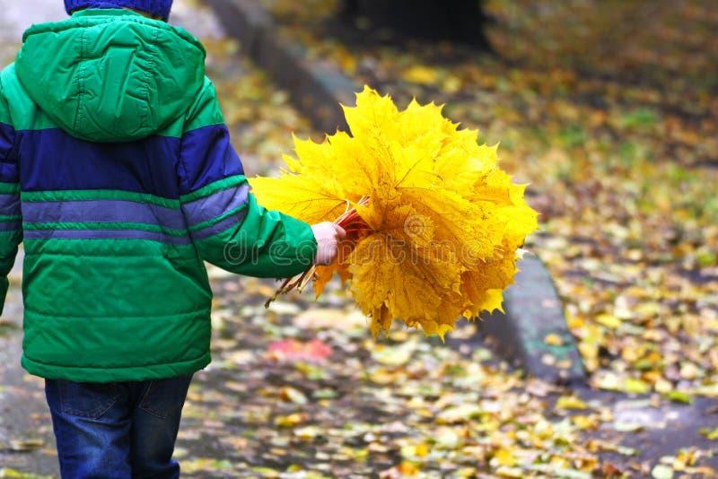 Ребенок с букетом листьев на дороге стоковая фотография rf