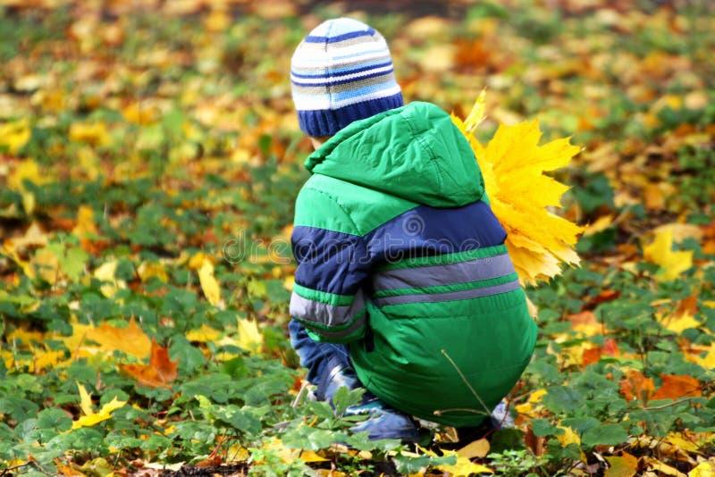 Ребенок с букетом листьев сидя на корточках среди упаденного leav стоковая фотография rf
