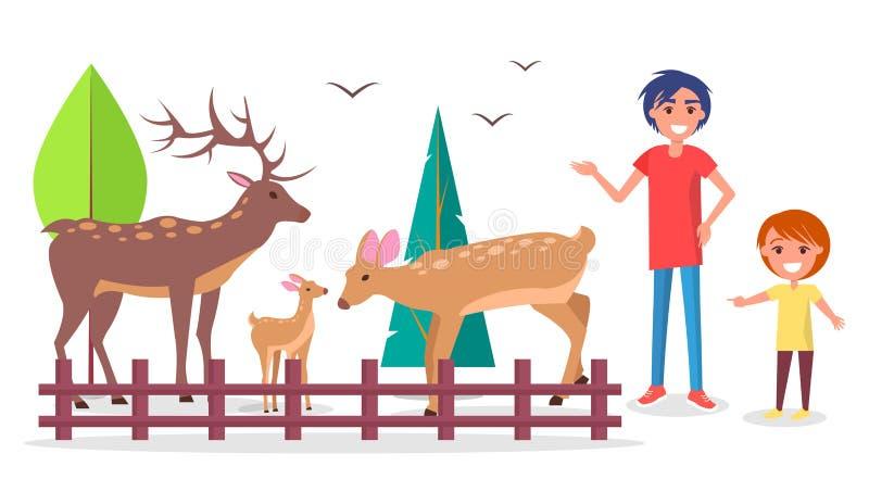 Ребенок с родителем на зоопарке около загона семьи оленей иллюстрация вектора