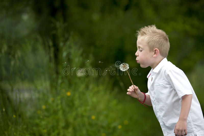 Ребенок дуя одуванчик стоковое фото rf