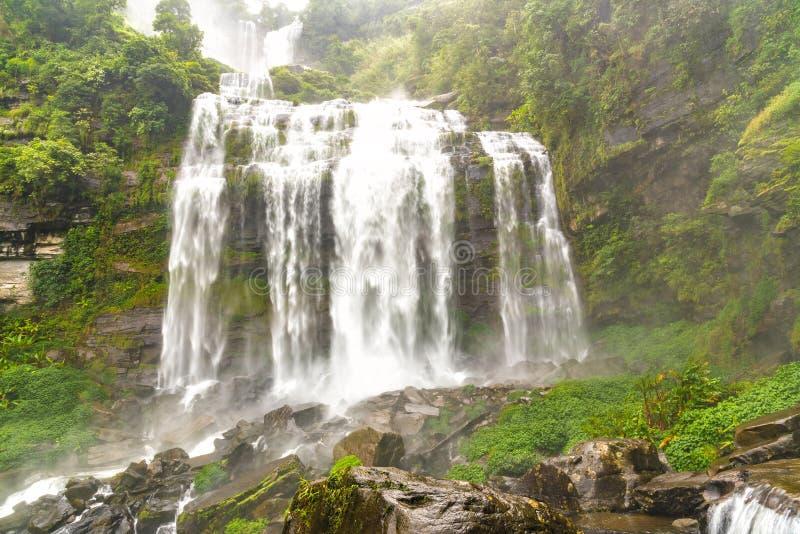 Ребенок Khamude, водопад a большой в глубоком лесе на гористой местности Bolaven стоковая фотография rf