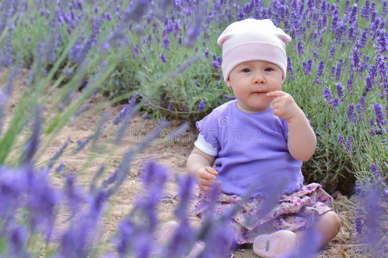 Ребенок Lavander стоковая фотография