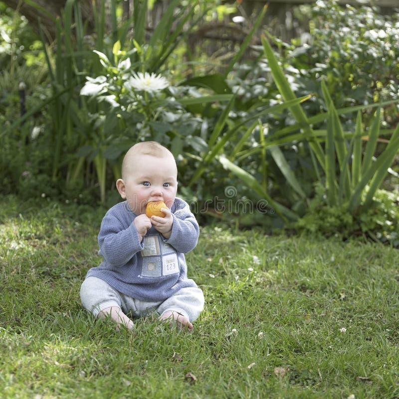 ребёнок есть плодоовощ стоковое фото