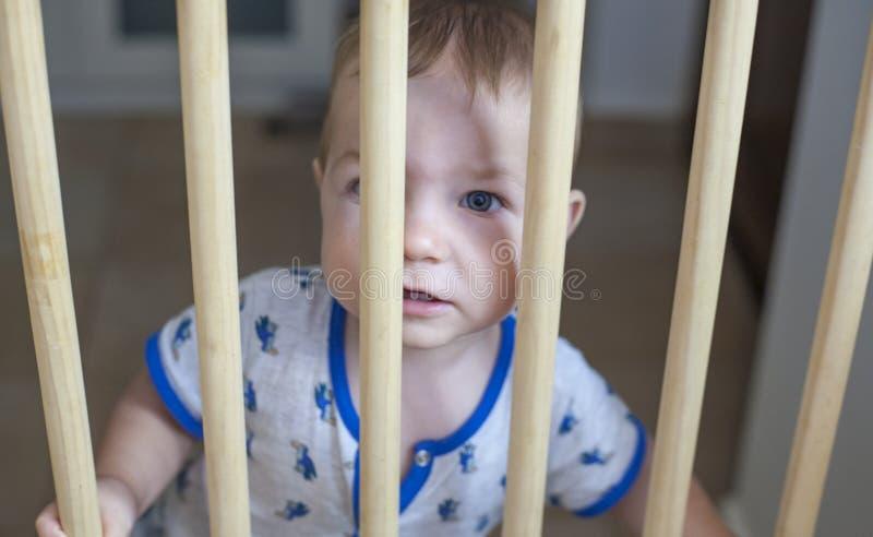 Ребёнок за деревянным стробом безопасности лестниц стоковые изображения