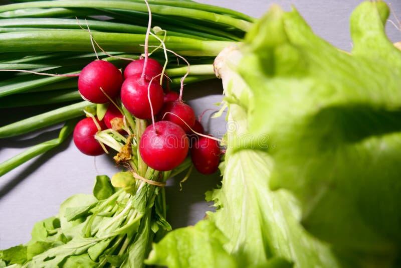 Редиски, зеленый салат и зеленый чеснок isoladed на серой предпосылке стоковая фотография