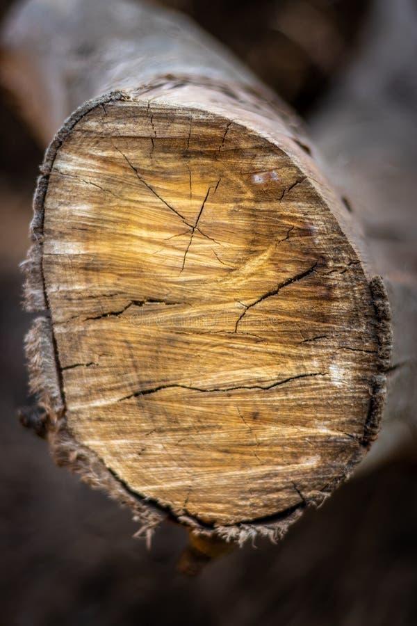 Резать деревянную широкую картину стоковые изображения