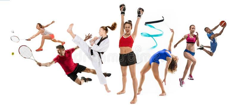Резвитесь коллаж о kickboxing, баскетболе, бадминтон, Тхэквондо, теннис, атлетика, звукомерная гимнастика, ход и стоковые изображения rf