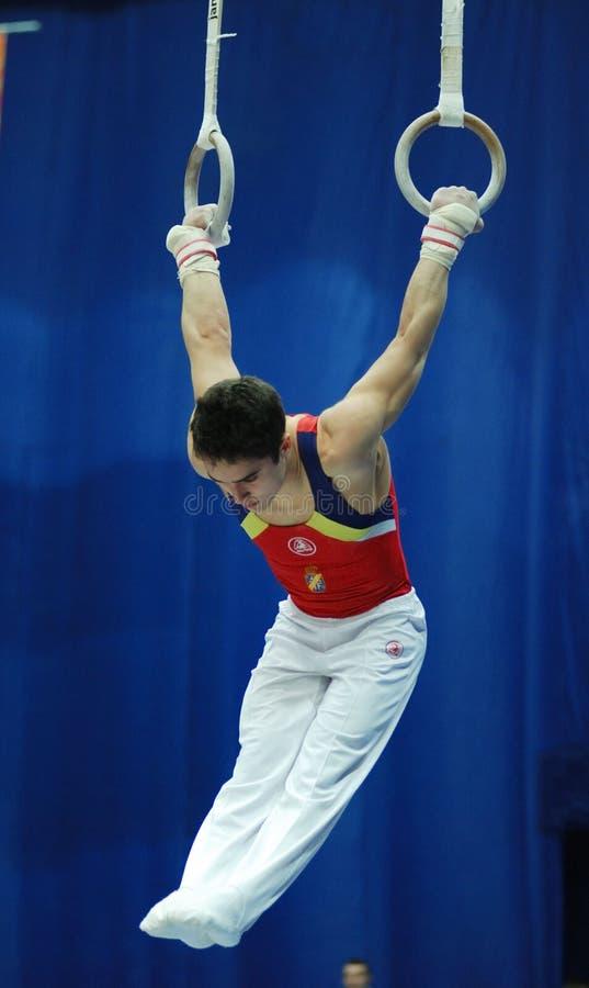 резвиться гимнастики стоковое фото rf