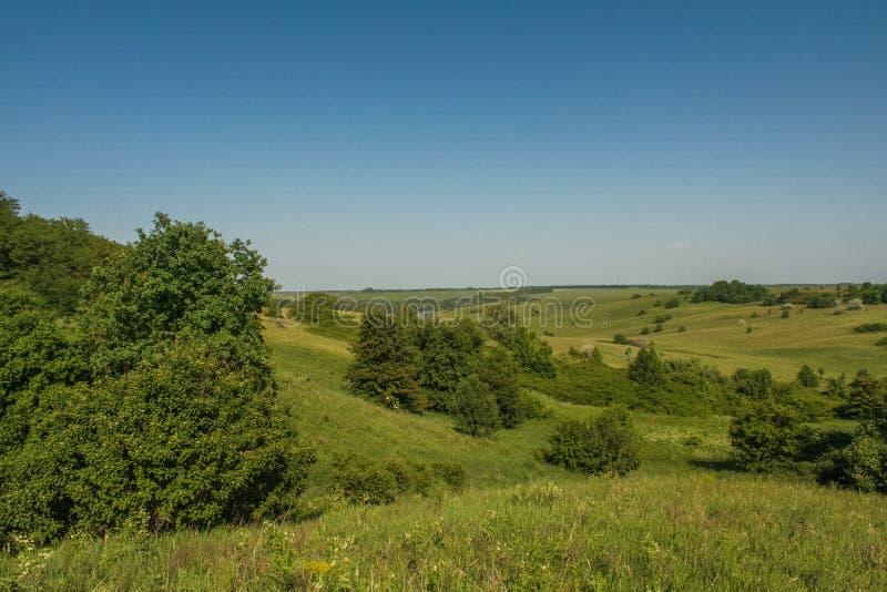 Резервуары и shelterbelts поля стоковые изображения rf