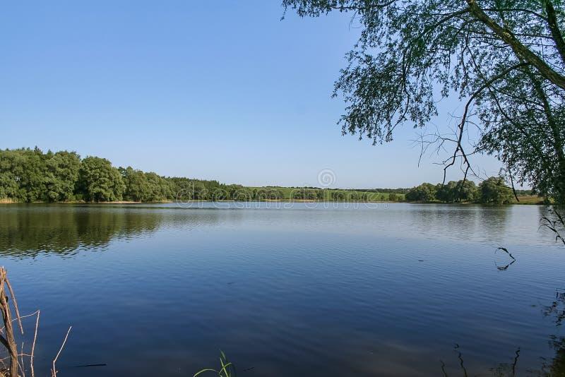 Резервуары и shelterbelts поля стоковая фотография rf