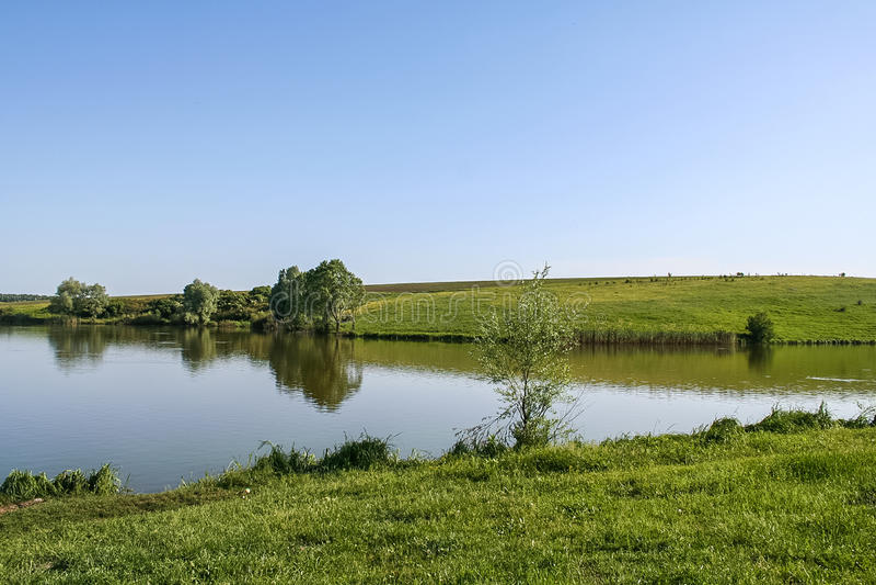 Резервуары и shelterbelts поля стоковое фото rf