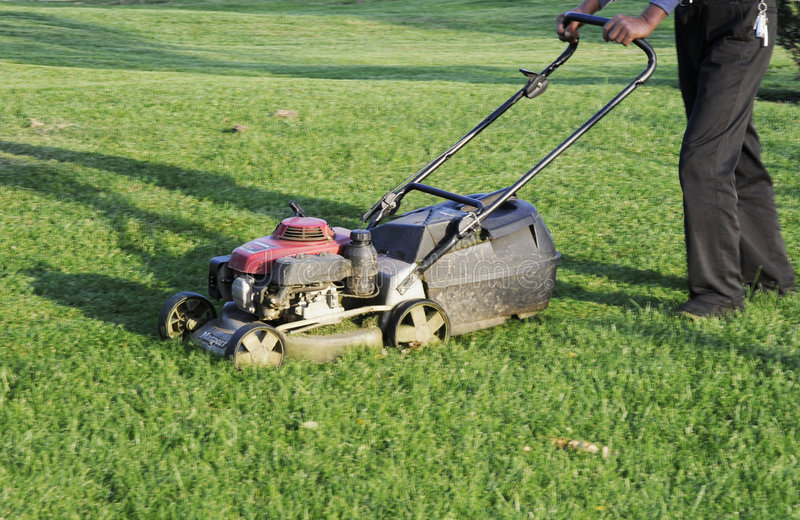 Резец травы стоковые изображения rf