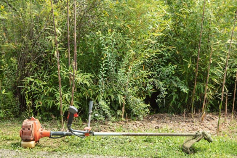 Резец щетки полет триммер, на поле травы стоковые фотографии rf