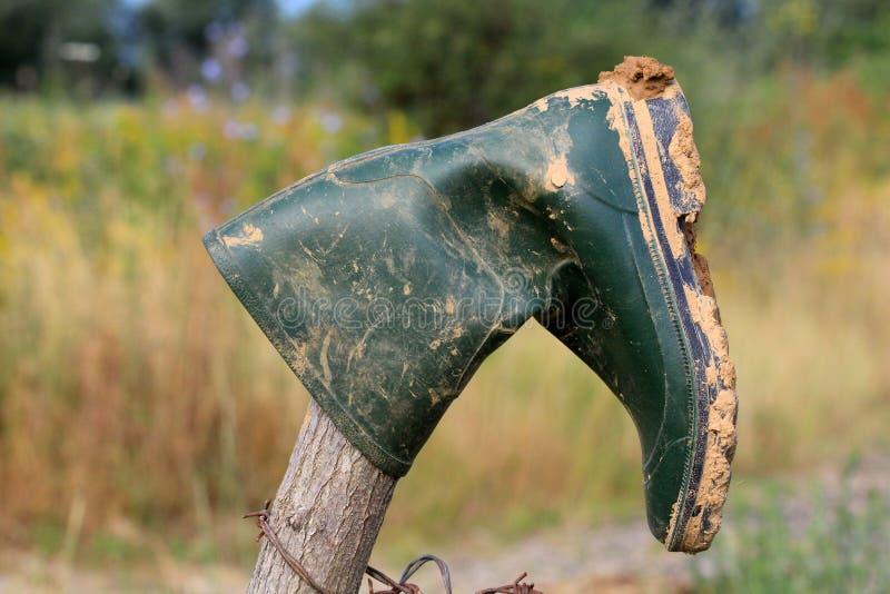 резина ботинка зеленая стоковые фотографии rf