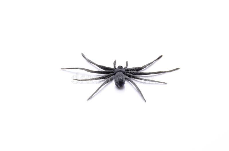 Резиновая игрушка паука для детей белизна изображения chickpea предпосылки стоковое фото