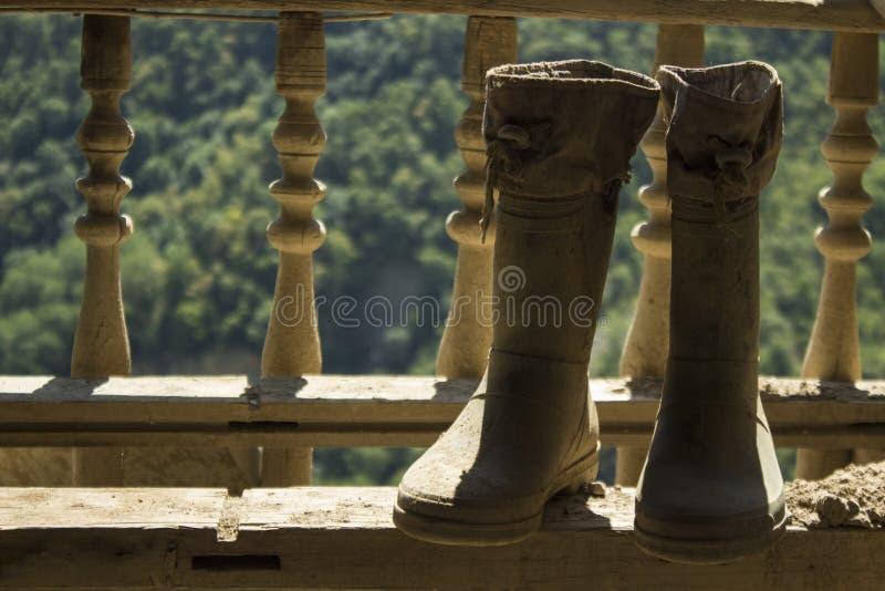 Резиновые ботинки на предпосылке природы стоковое фото rf