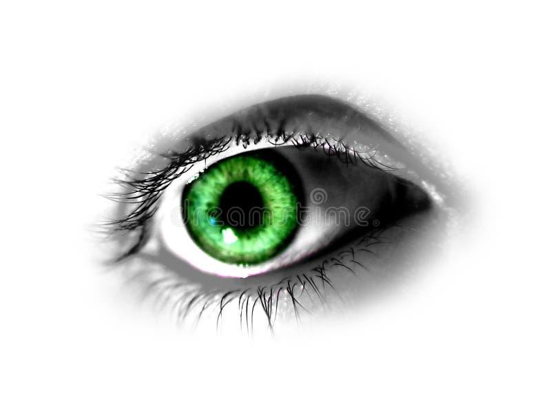 резюмируйте зеленый цвет глаза иллюстрация штока