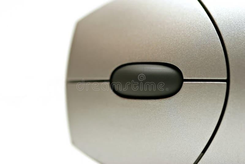 резюмируйте мышь макроса стоковое изображение