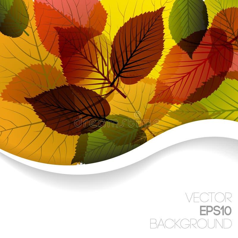 резюмируйте предпосылку осени флористическую иллюстрация вектора