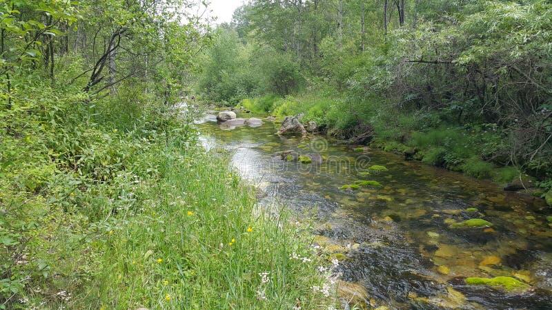 Река видимо и скрыто стоковые изображения rf