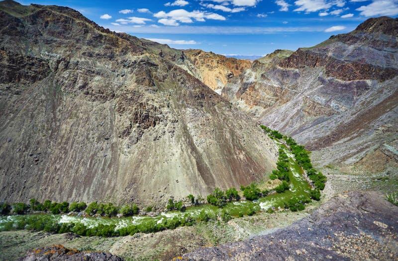 Download Река в антенне пустыни стоковое изображение. изображение насчитывающей adventurousness - 118839431