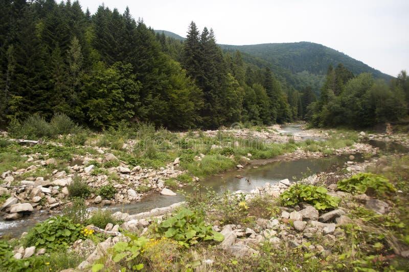 Река в горах стоковые фото