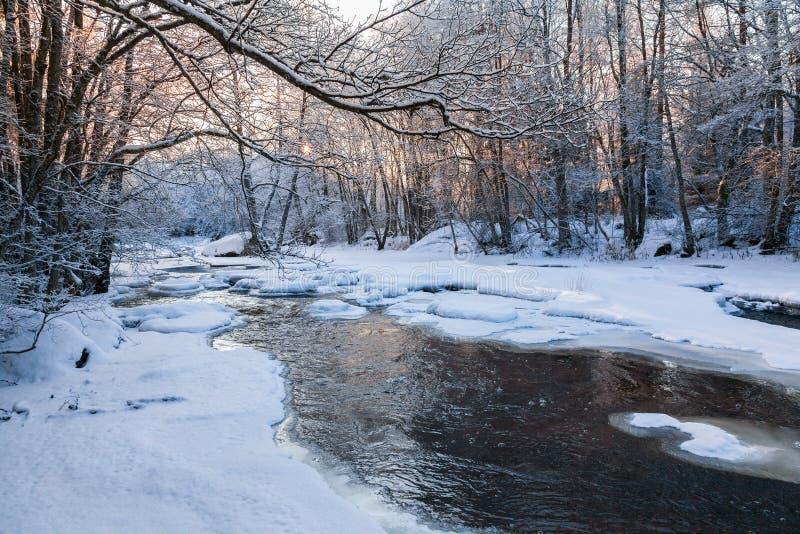 Download Река в лесе зимы стоковое изображение. изображение насчитывающей морозно - 81815019