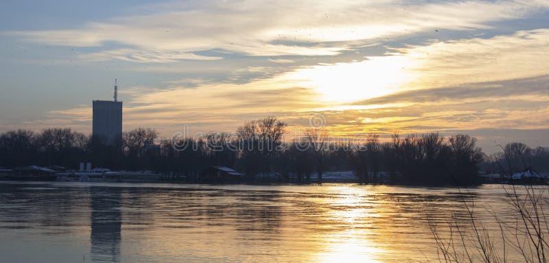 Река в зиме стоковые изображения rf