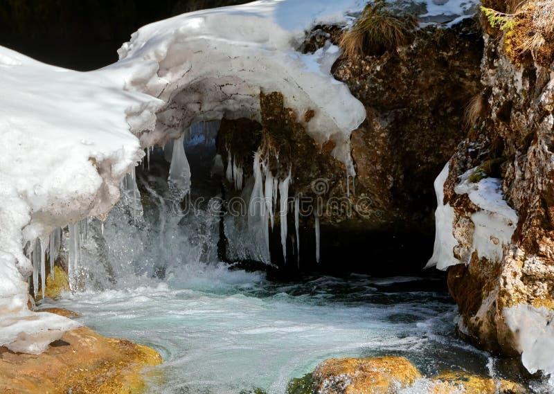 Река в зиме стоковые фото