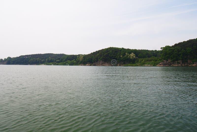 Река в Корее стоковое фото rf