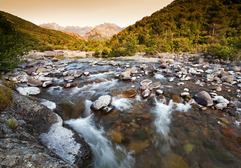 Река в Корсика стоковые изображения rf