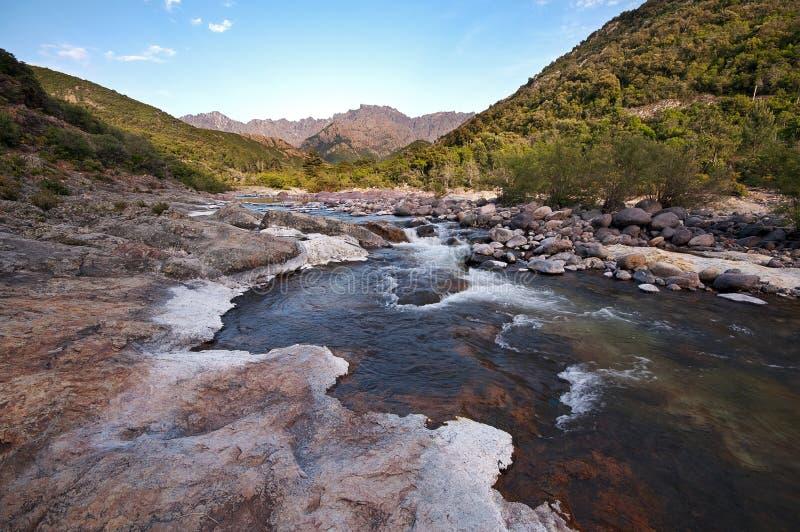 Река в Корсика стоковые фото