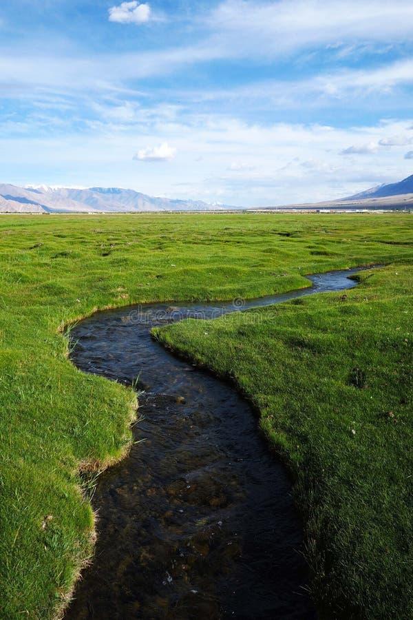 Река в луге стоковое фото