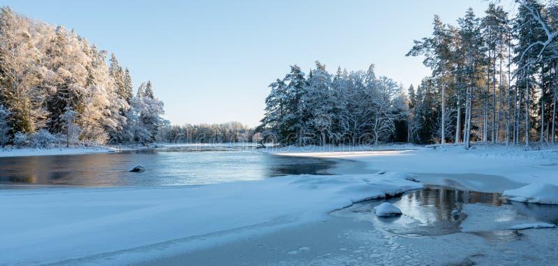 Река в морозном утре стоковая фотография rf