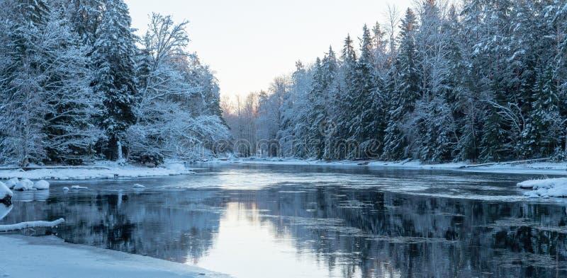 Река в морозном утре стоковое фото