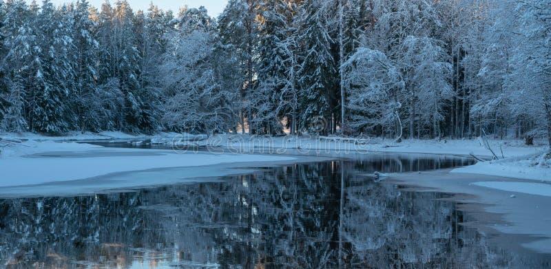 Река в морозном утре стоковые фото